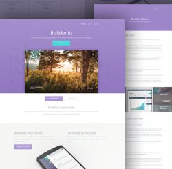 buildir_free_template_purple